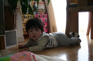 20081115_0072